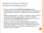 indirect welfare effects important externalities