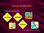 forms of hazards7
