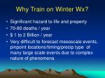 why train on winter wx
