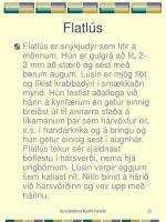 flatl s