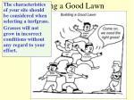 building a good lawn