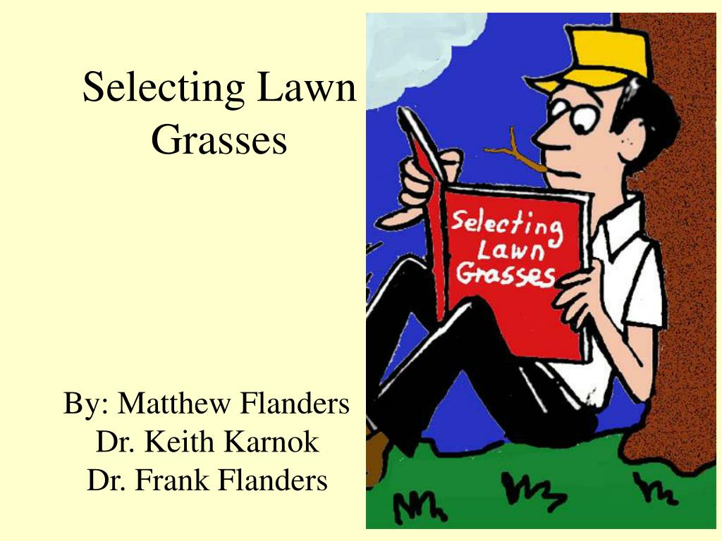 selecting lawn grasses l.