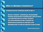 what is a workplace competency
