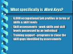 what specifically is work keys