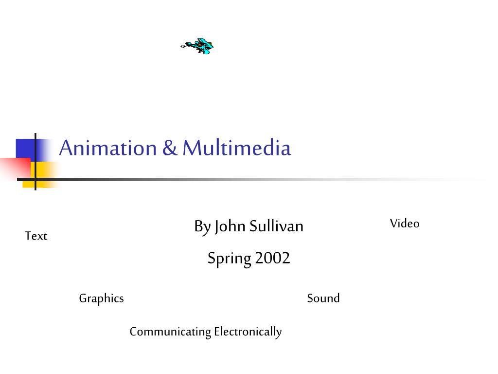animation multimedia l.