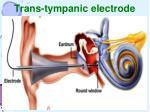 trans tympanic electrode