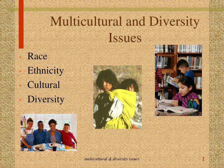 multicultural and diversity issues n.