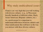 why study multicultural issues