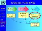 evaluaci n y ciclo de vida28