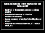what happened to the jews after the holocaust