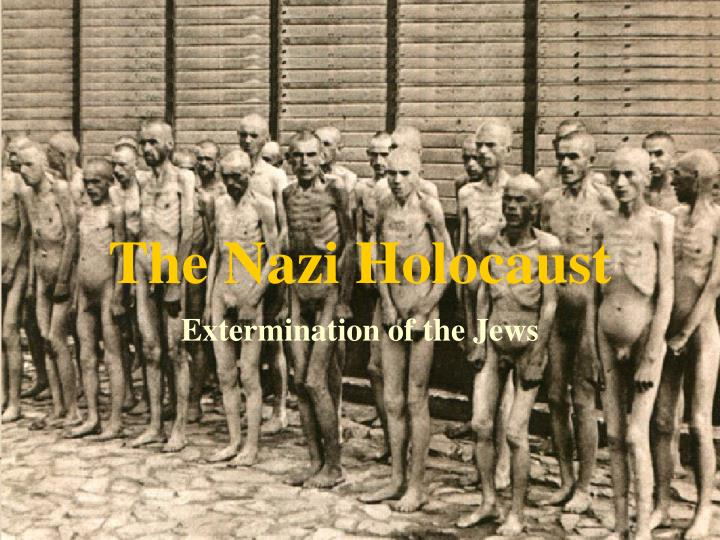 the nazi holocaust n.