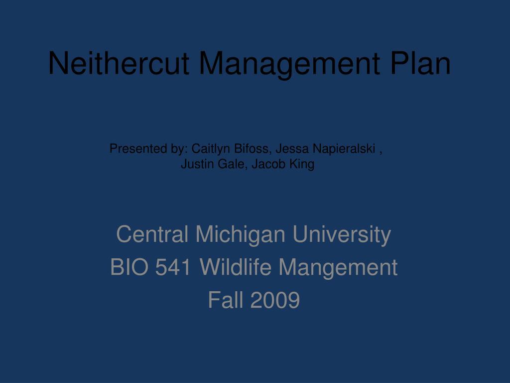 neithercut management plan l.