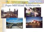 paper mill island baldwinsville