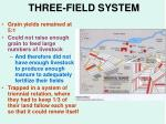 three field system