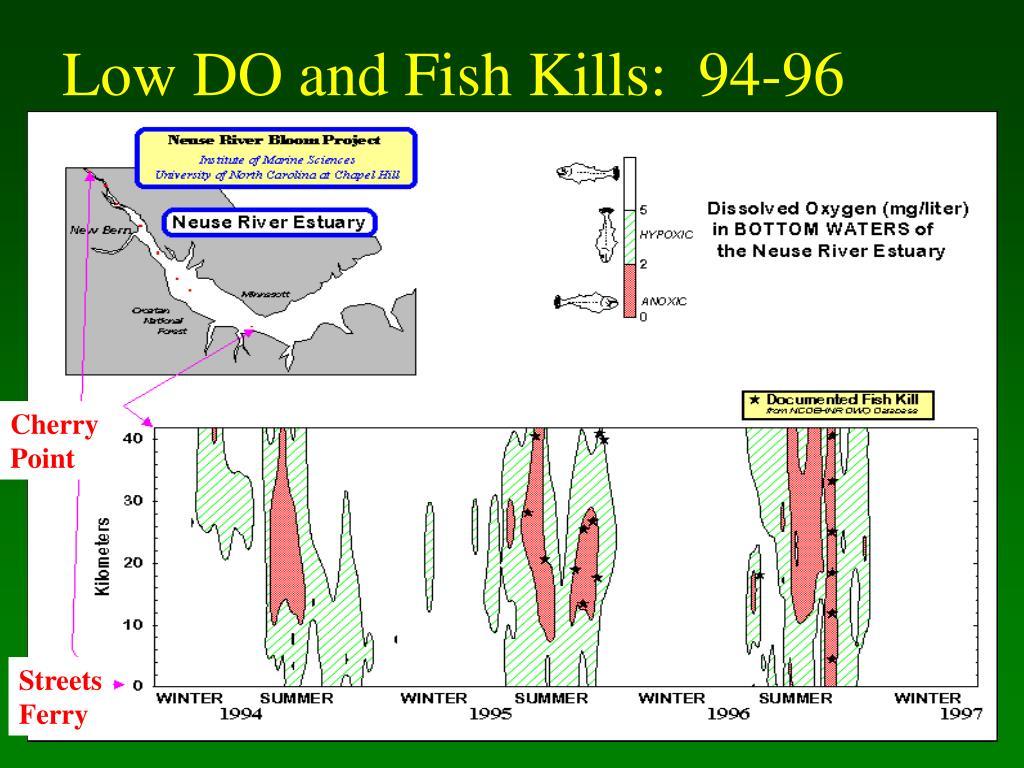 Low DO and Fish Kills:  94-96