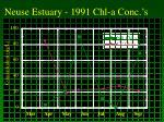 neuse estuary 1991 chl a conc s