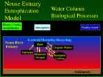 neuse estuary eutrophication model10