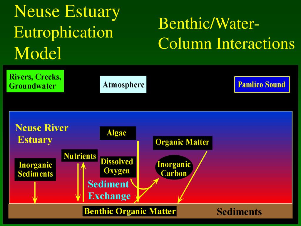 Benthic/Water-