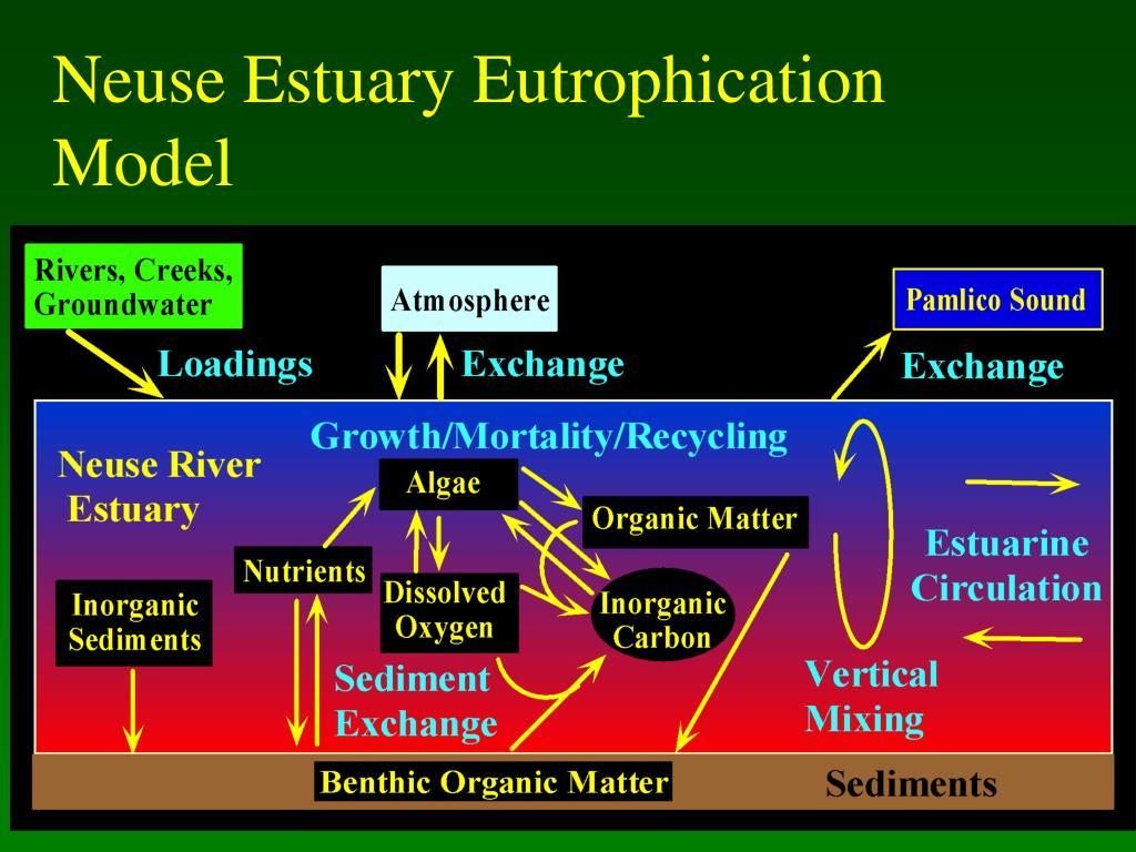 Neuse Estuary Eutrophication
