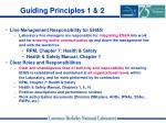 guiding principles 1 2