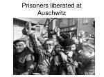 prisoners liberated at auschwitz