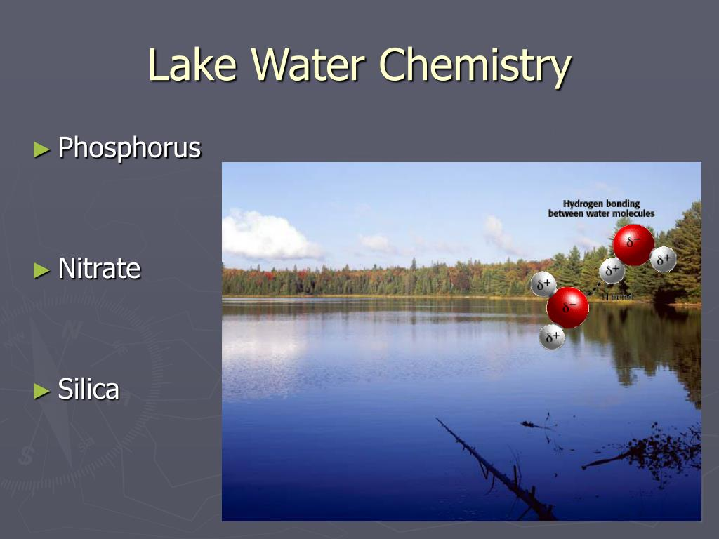 lake water chemistry l.