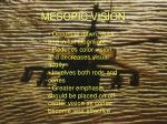 mesopic vision