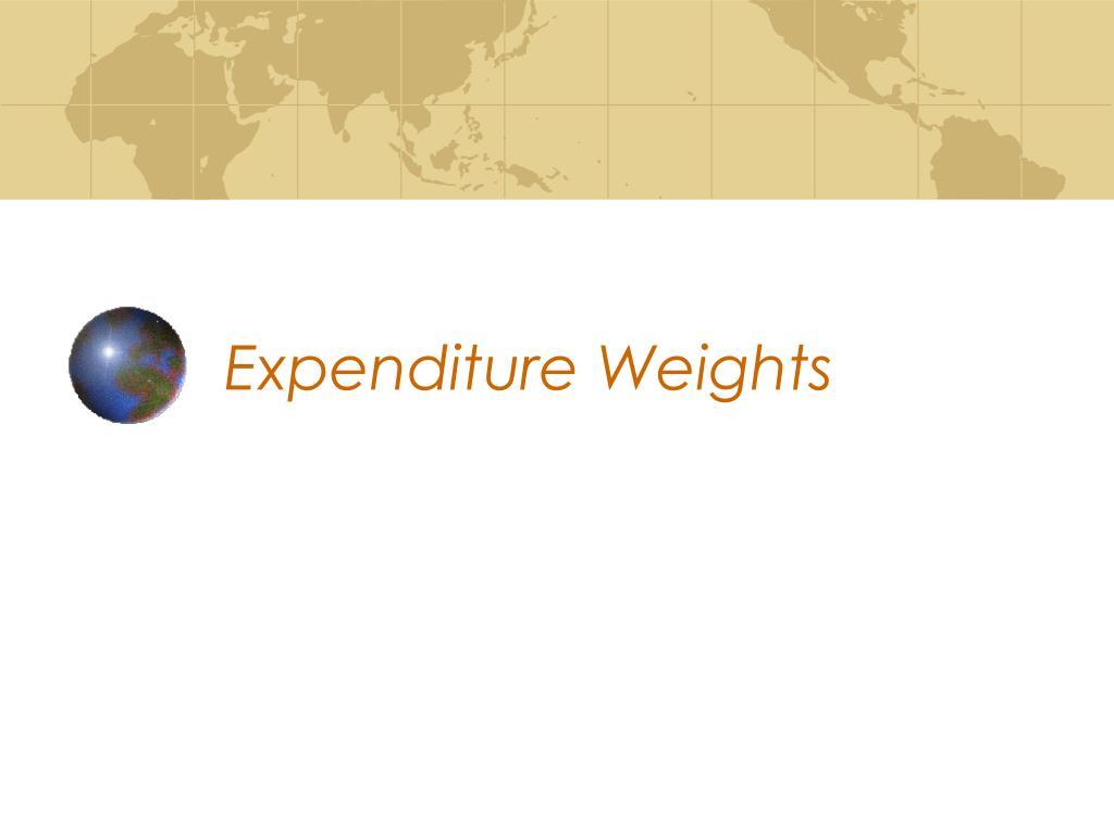 Expenditure Weights