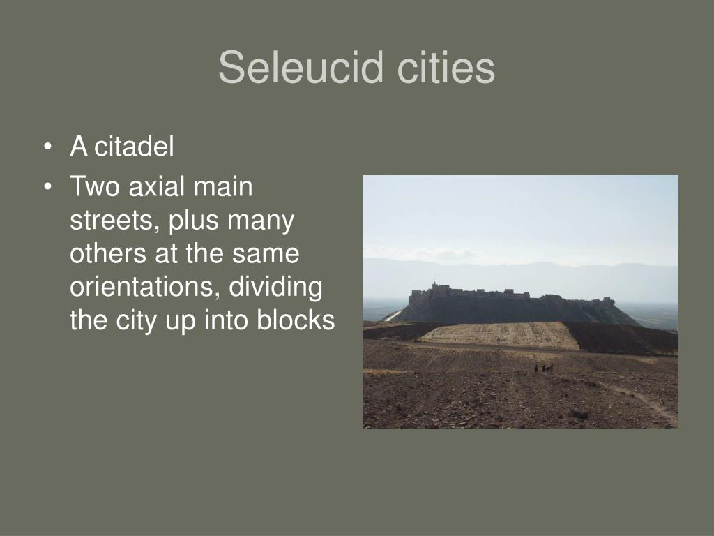 Seleucid cities