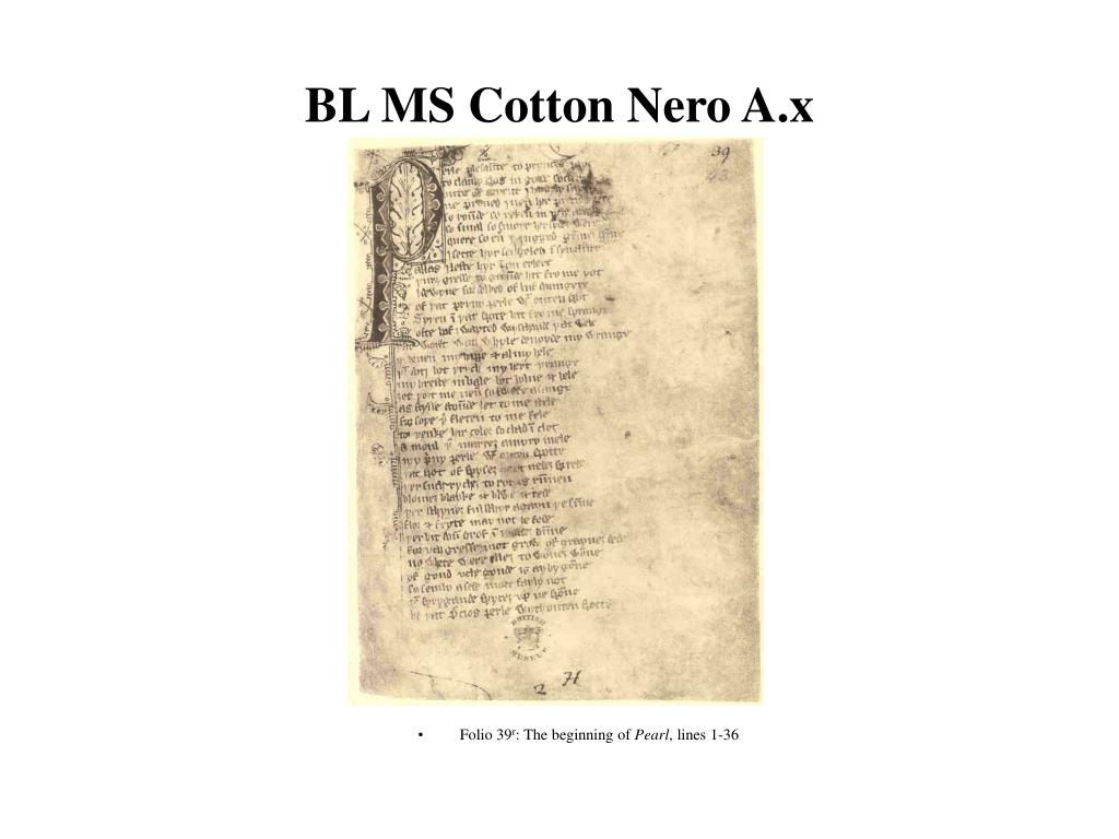 bl ms cotton nero a x l.