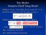 the model adaptive field ising model