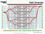 path diversity63