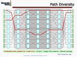 path diversity64