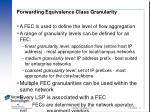 forwarding equivalence class granularity