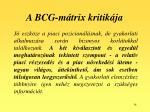 a bcg m trix kritik ja