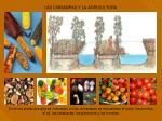 las chinampas y la agricultura