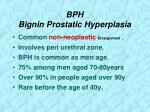 bph bignin prostatic hyperplasia