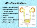 bph complications