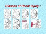 classes of renal injury