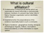 what is cultural affiliation