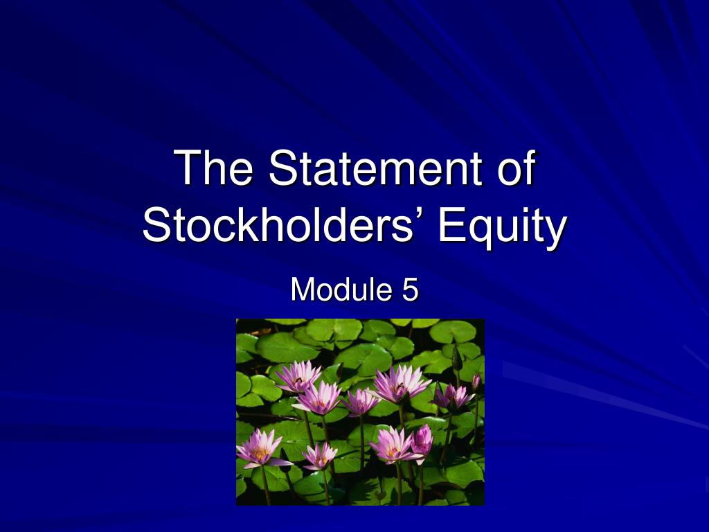 the statement of stockholders equity l.