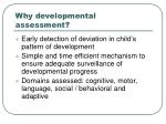 why developmental assessment