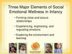 three major elements of social emotional wellness in infancy