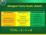 glasgow coma scale adult