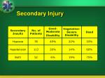 secondary injury