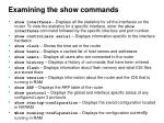 examining the show commands