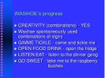 washoe s progress32