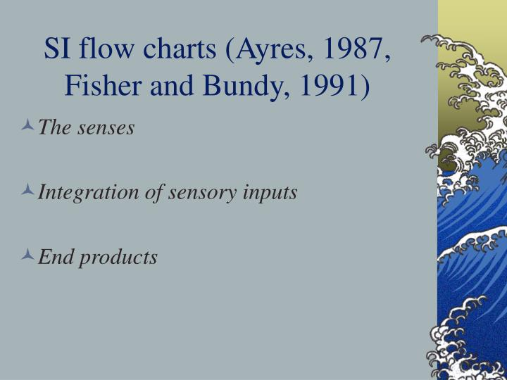 SI flow charts (Ayres, 1987, Fisher and Bundy, 1991)