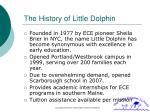 the history of little dolphin
