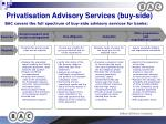 privatisation advisory services buy side